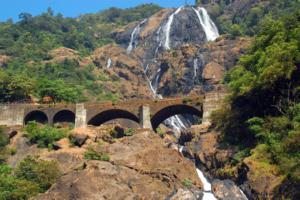waterfall in goa