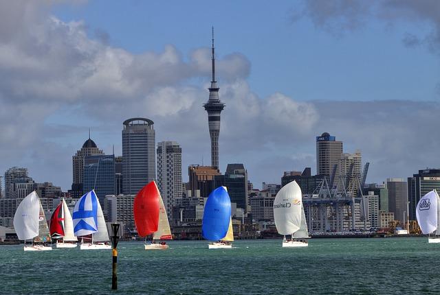 Auckland fun activity